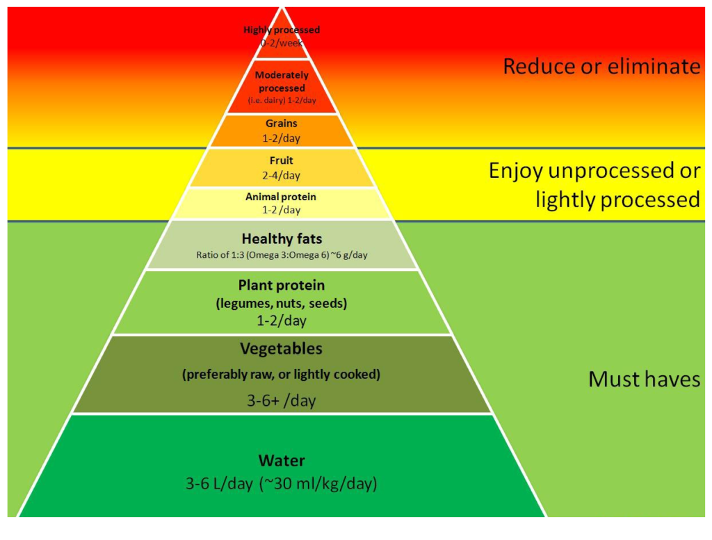 thermic effect of food diet